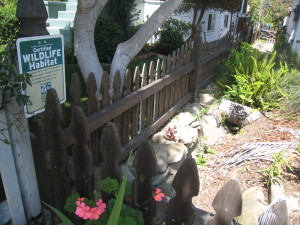 Alameda cottage with native garden